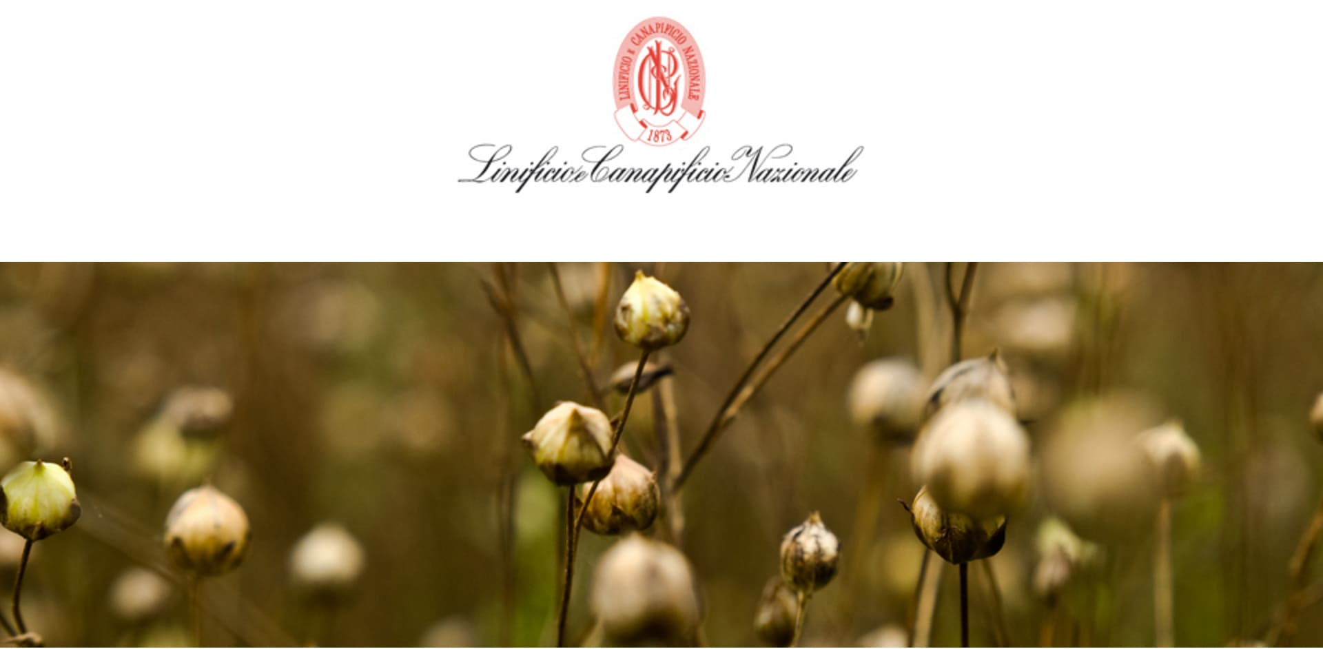 Searching the World for the Finest Linen Yarn | Mungo