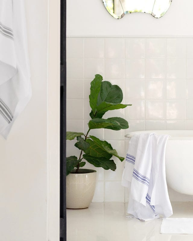 Mungo Willow Weave Cotton Towels in Blue and Charcoal, featured in a bathroom scene with a fiddle leaf plant.