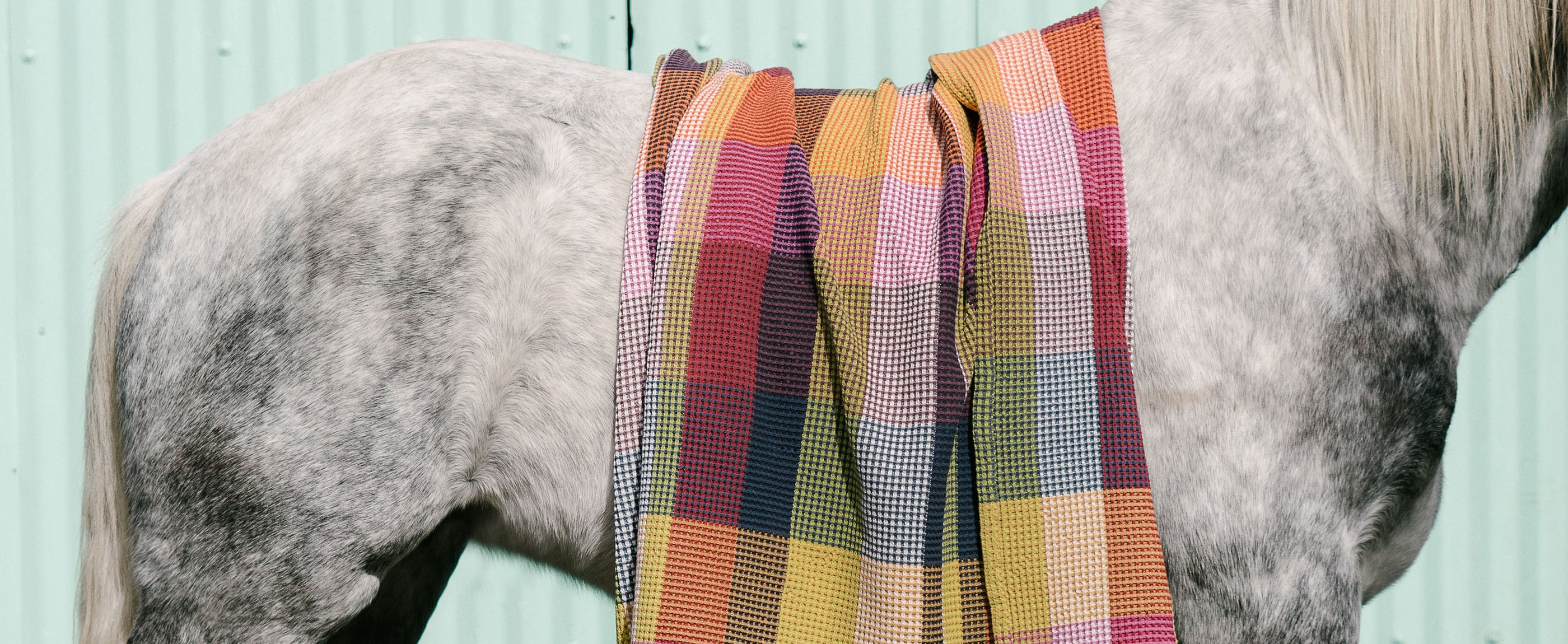The Mungo Vrou-vrou blanket looks good in the home, or on a horse.