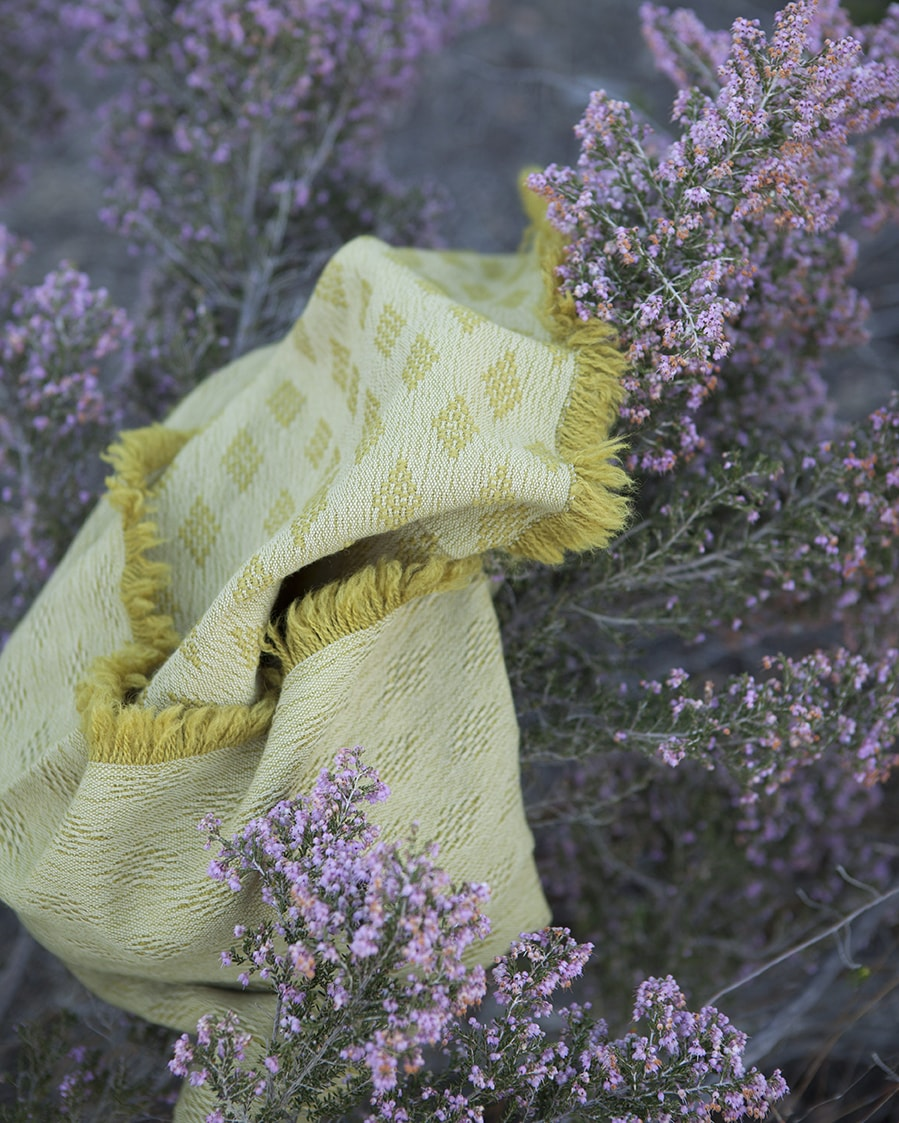 Naturally Dyed Kenza scarf in the Erica colourway seen here amongst the flowers that gave it it's colour