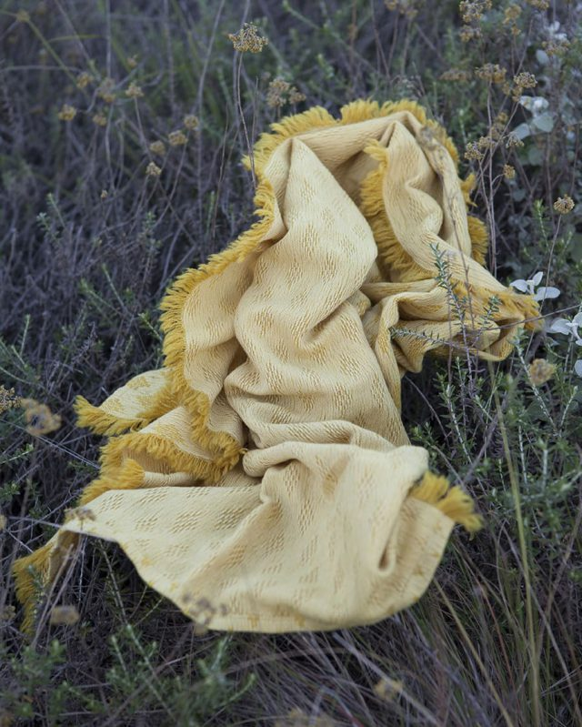 The Kenza scarf in the Heli colourway was dyed using helichrysum flowers