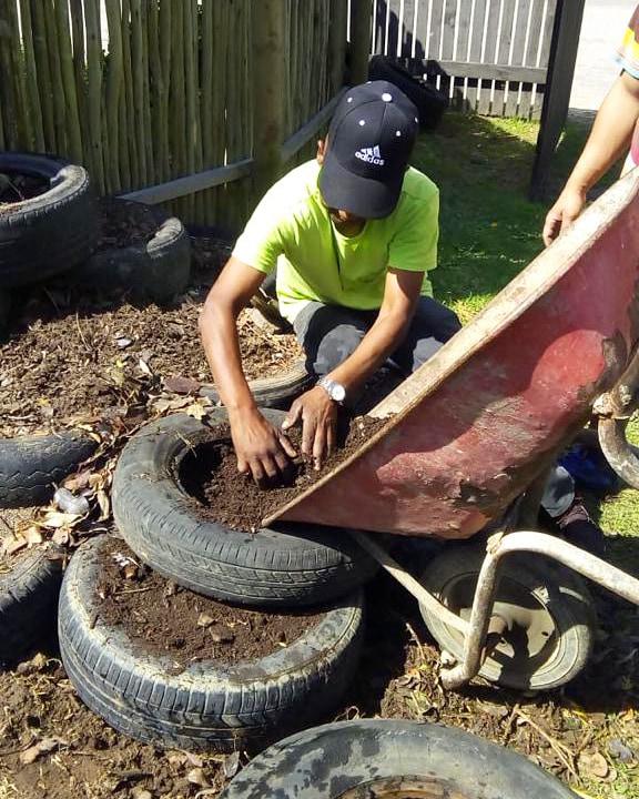 Adding mulch to the tyre gardens during the Mungo MOVE staff development gardening workshop