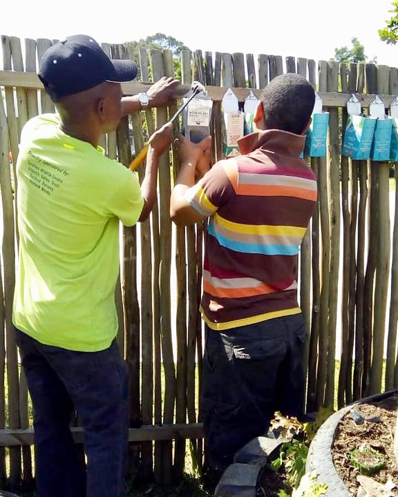 Creating a hanging wall garden from recycled bottles and containers at the Mungo MOVE gardening course