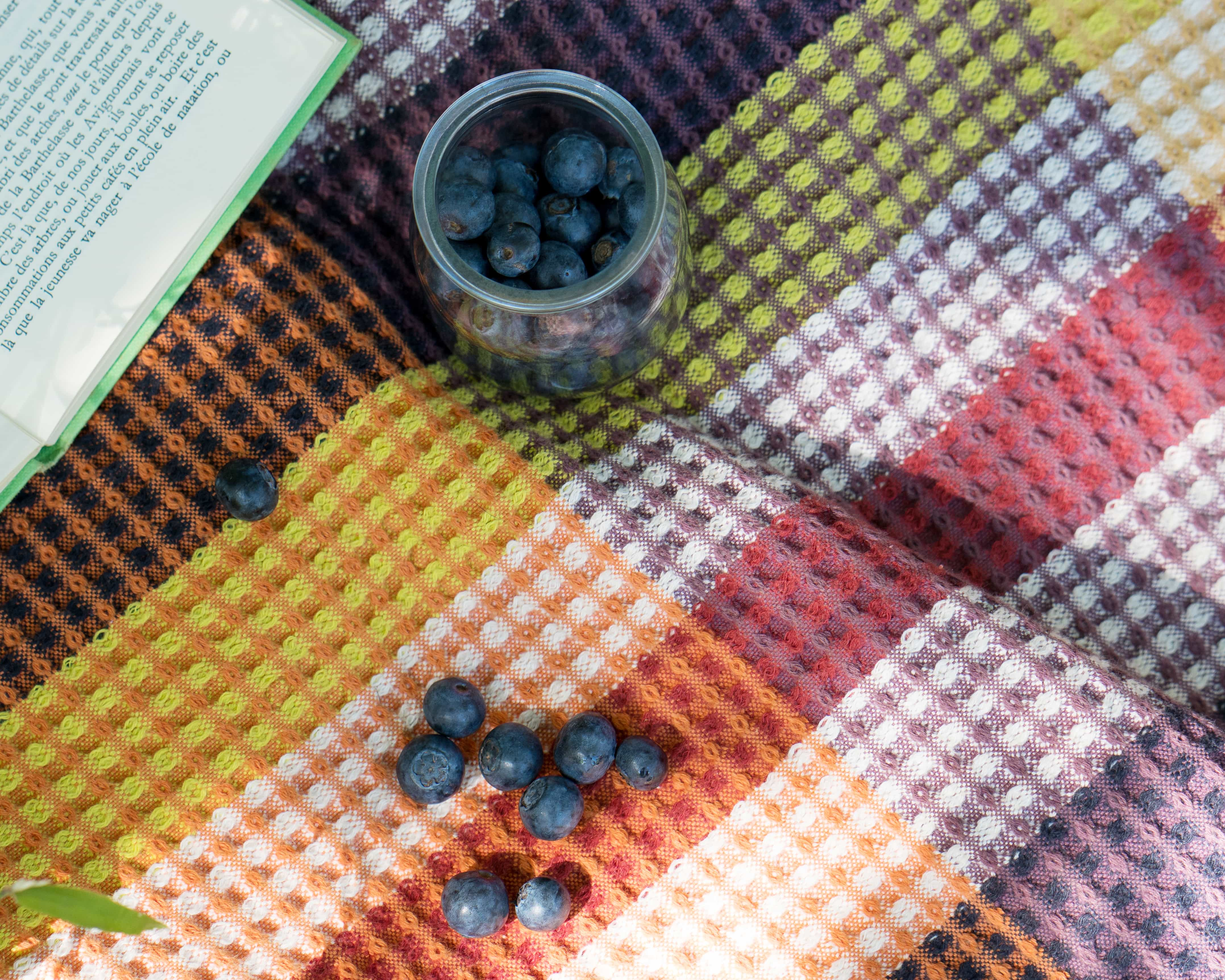 Blueberries and a book on the Mungo Vrou-Vrou blanket. A springtime picnic scene