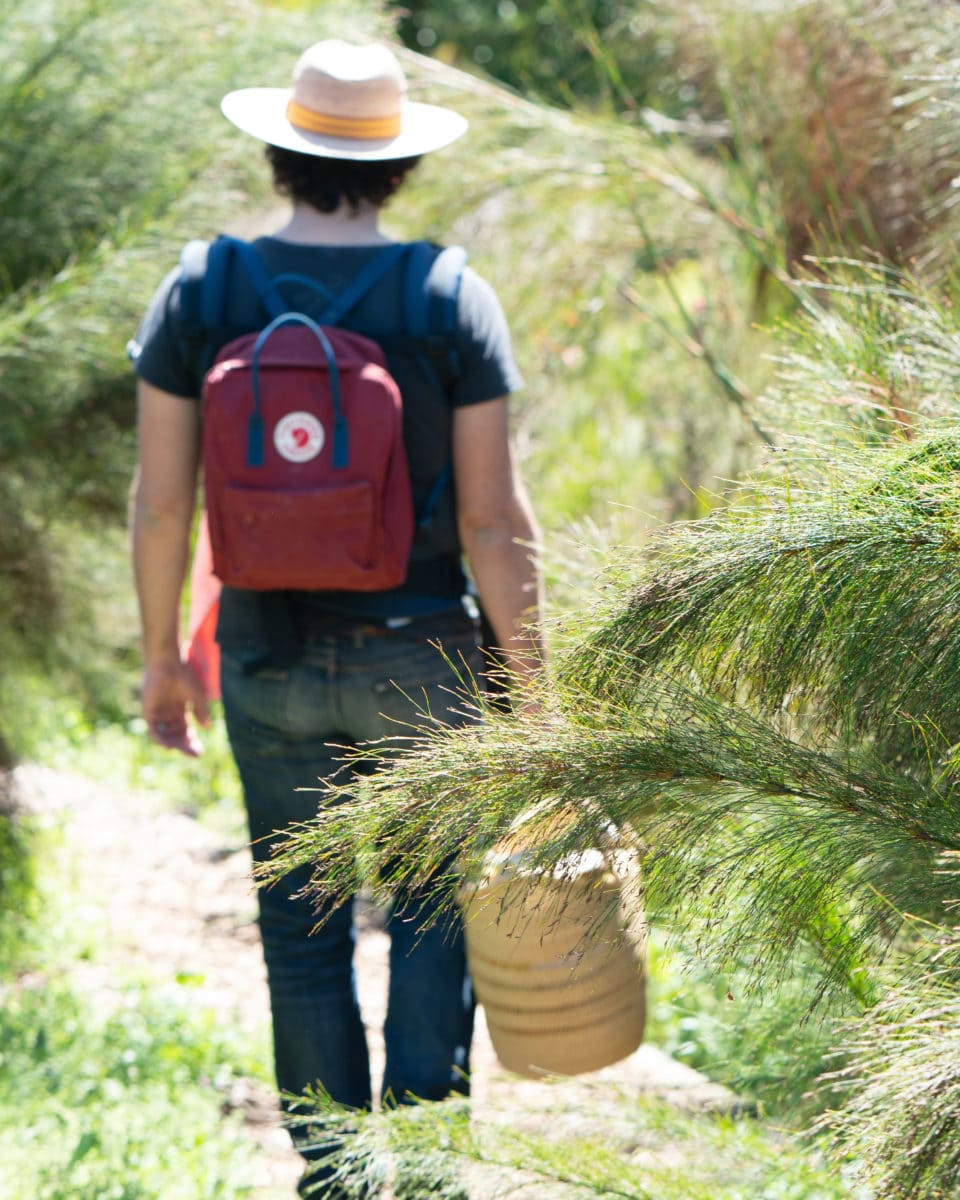 Mungo Spring Guide - looking for the perfect outdoors picnic spot