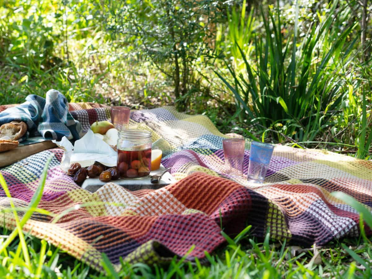 A spring picnic scene with a Mungo Vrou-Vrou blanket, fresh bread, cheese, olives and fruit. Set in the beautiful Kirstenbosch Botanical Gardens of Cape Town