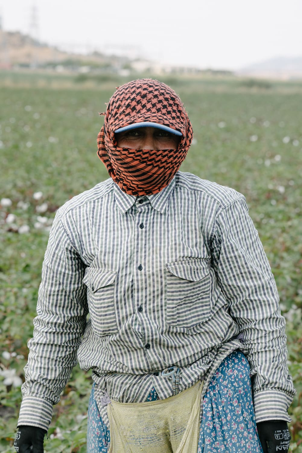 Organic cotton picker in a field in Turkey